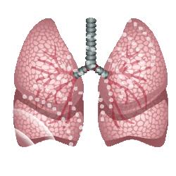 Датчик частоты дыхания иконка Релеон